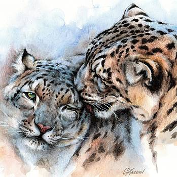 Unconditionally Snow Leopards by Christine Karron