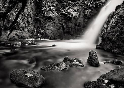 Vennford Brook Waterfall by Pete Hemington
