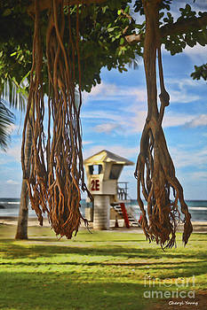 View from Under the Banyan Tree by Cheryl Young