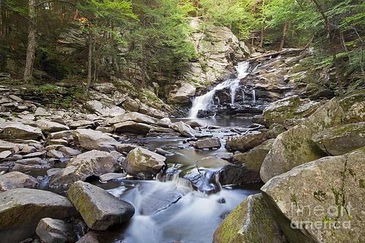 Jonathan Welch - Wahconah Falls