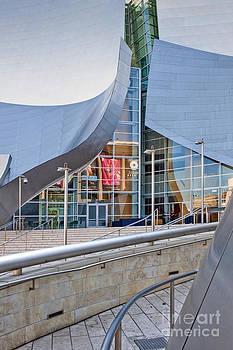David  Zanzinger - Walt Disney Concert Hall Vertical Exterior Building Frank Gehry Architect 8