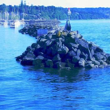 Washington Marina by Frank Jackson