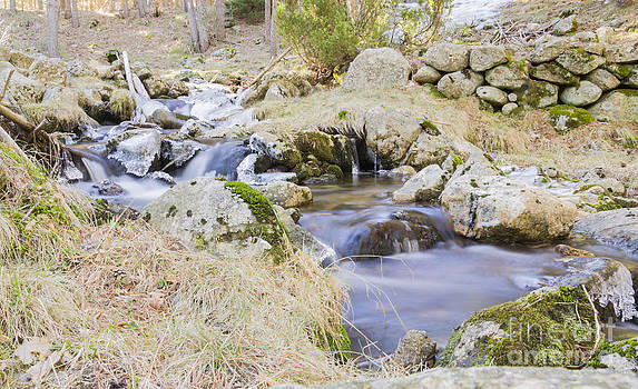 Water flowing by Stefano Piccini