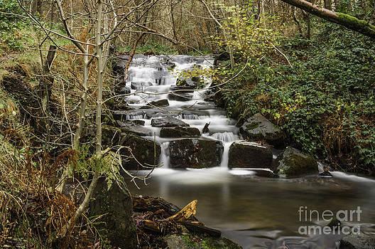 Steve Purnell - Waterfall