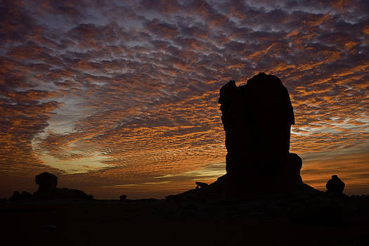 White Desert Sunrise by Judi Baker