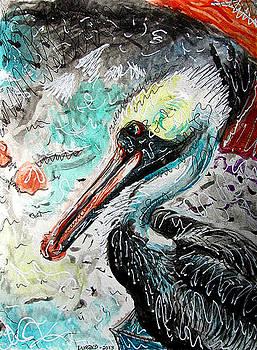 White Pelican by Douglas Durand