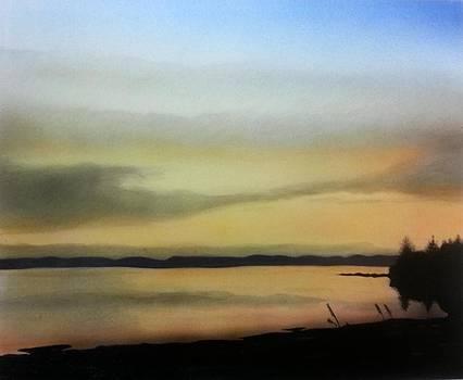 Willapa Bay by Brenda Bliss
