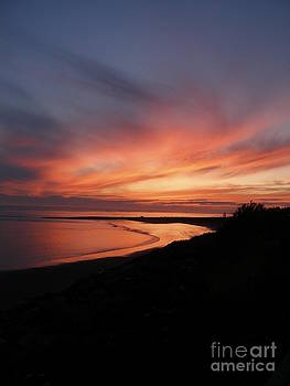 Willapa Bay by Dawn Kori Snyder