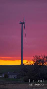 Steven Ralser - Wind power