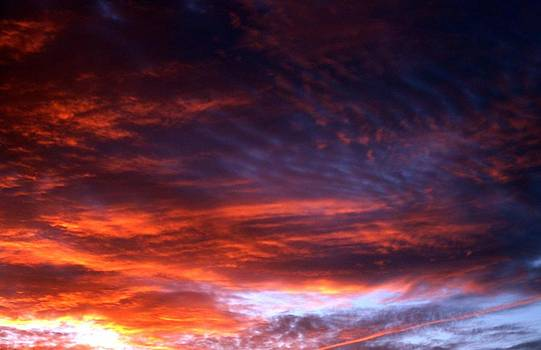 Windows of Heaven by Julia  Walsh