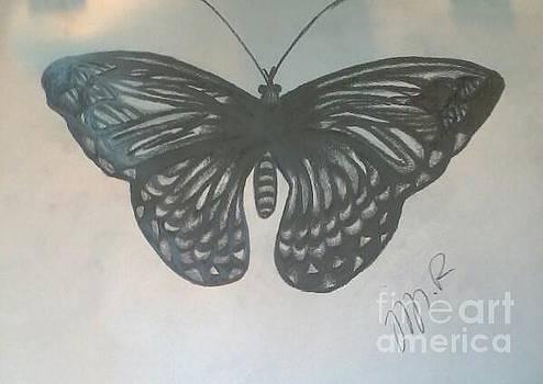 Wings  by Tiffany  Rios