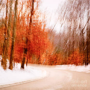 Lisa McStamp - Winter Parkway One