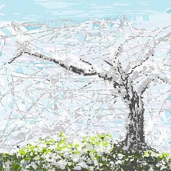 Shesh Tantry - Winterscape II