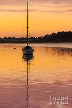 Svetlana Sewell - Yacht