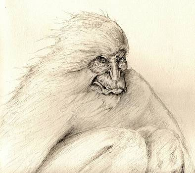 Yeti by Rudy Cepeda