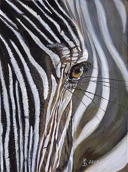 Zebra by Rayna DeHoog