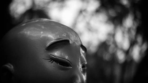Zen by Kam Chuen Dung