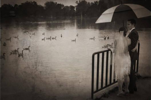 14 by Jim Larimer