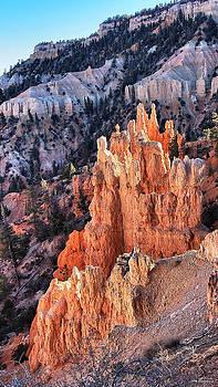 Bryce Canyon by SM Shahrokni