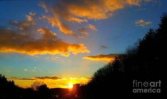 Sunset by Rose Wang