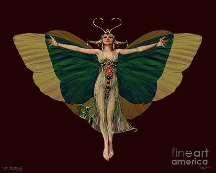 16x20 Butterfly Flapper by Dia T