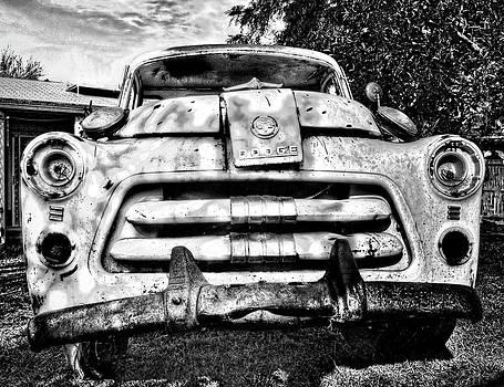 Saija  Lehtonen - 1954 Dodge Truck
