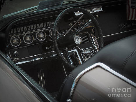 1966 Ford Thunderbird by David Pettit
