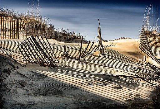 1st Place All Photography Art Exhibition Dune Fences by Terry Pellmar