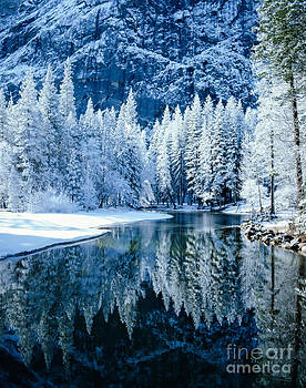 Merced River Reflection by Tracy Knauer