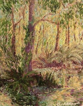 Rosemary  Creek by Beth Arroyo