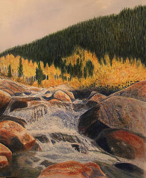 Alluvial Fan by Carol Oberg Riley