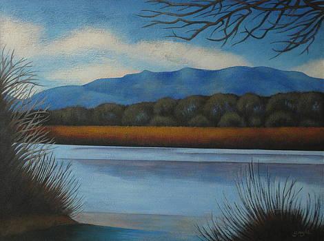 Along the Rio Grande by Gayle Faucette Wisbon