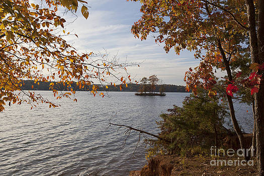 Jonathan Welch - Autumn on Lake Norman