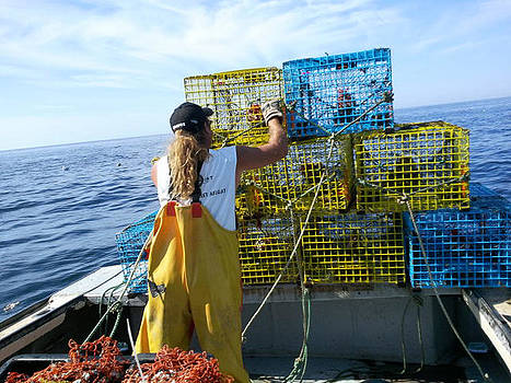 Baited Lobster Traps by Lisa Moore