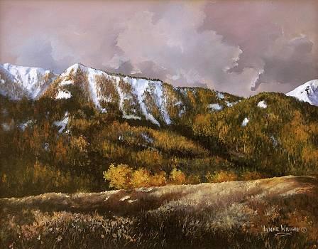Bear Claw by Lynne Wright
