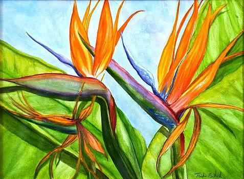Birds of Paradise by Trish Bilich