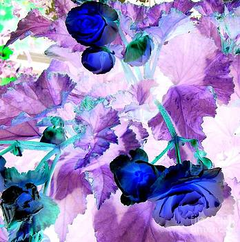 Blue by Susan Saver