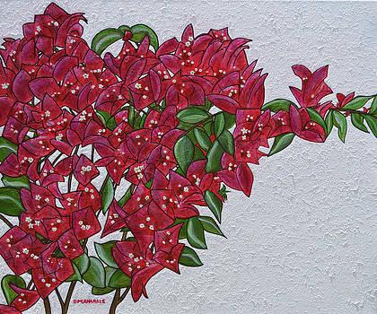 Bougainvillea by Donna  Manaraze
