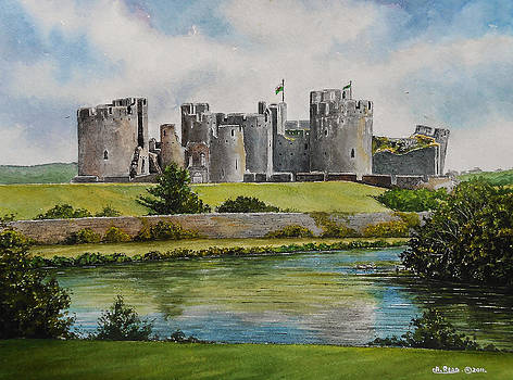 Caerphilly Castle  by Andrew Read