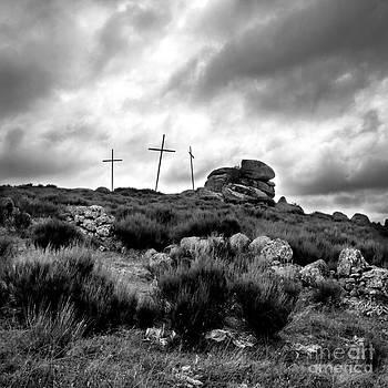 BERNARD JAUBERT - Cross