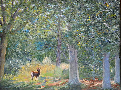 Deer In The Clearing by Betty McGlamery