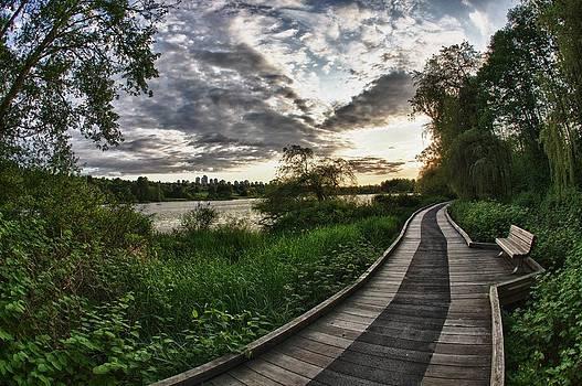 Deer Lake Boardwalk by Scott Holmes