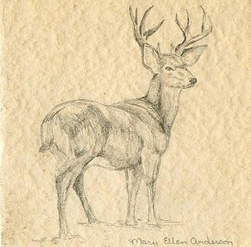 Elk by Mary Ellen Anderson
