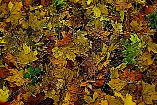 Fallen leaves by Ron Harpham