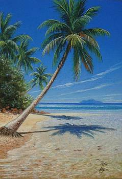 Fiji Beach by Pravin  Sen