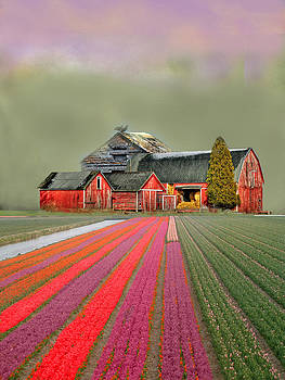 Flower Field Series by Sid Katragadda