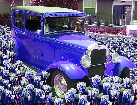 Ford by Moshfegh Rakhsha