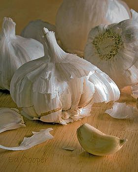 Garlic by Ed Cooper