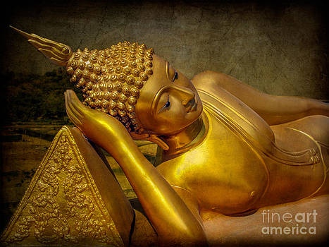 Adrian Evans - Golden Buddha