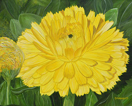 Golden Punch by Donna  Manaraze